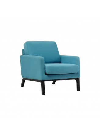 1 SEATER SOFA - FRM60491