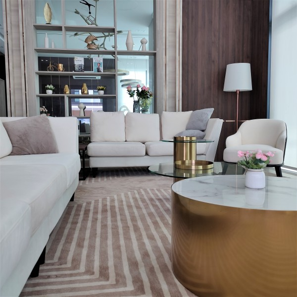 COFFEE TABLE SET -  FRM21055