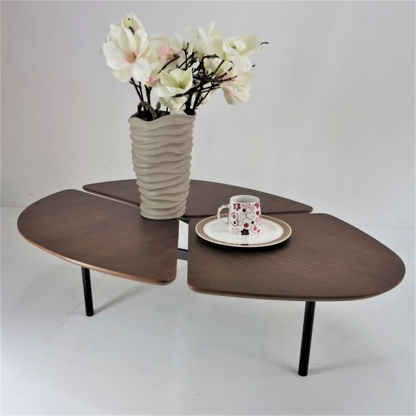 COFFEE TABLE - FRM30624