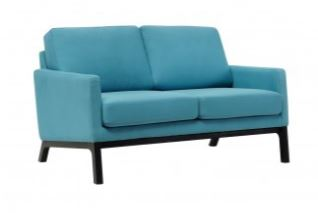 CERES 2 SEATER SOFA. - FRM6049A4